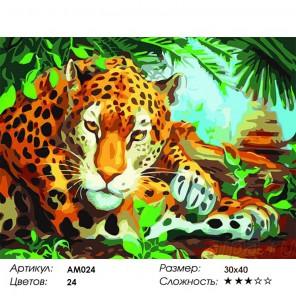 Сложность и количество цветов Хранитель джунглей Раскраска картина по номерам Color Kit