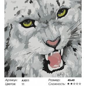 Барс Раскраска картина по номерам Color Kit