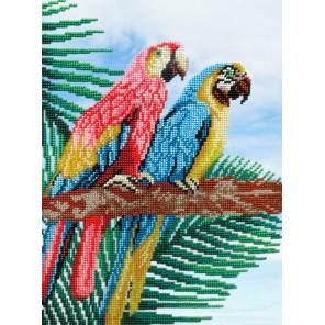Попугаи Набор для вышивания бисером МП Студия