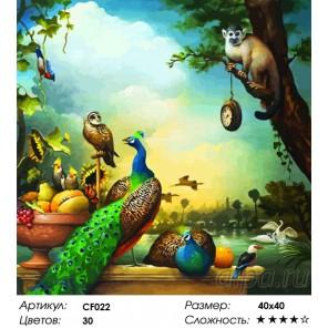 Сложность и количество красок Натюрморт с павлинами Раскраска по номерам на холсте Color Kit CF022