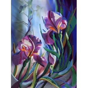 Ирисы Канва с рисунком для вышивки бисером Конек