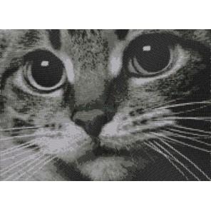 Котёнок Канва с рисунком для вышивки бисером Конек