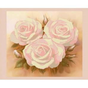 Розовые розы Канва с рисунком для вышивки бисером Конек