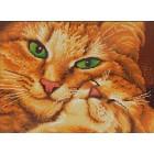 Кошка с котенком Канва с рисунком для вышивки бисером Конек