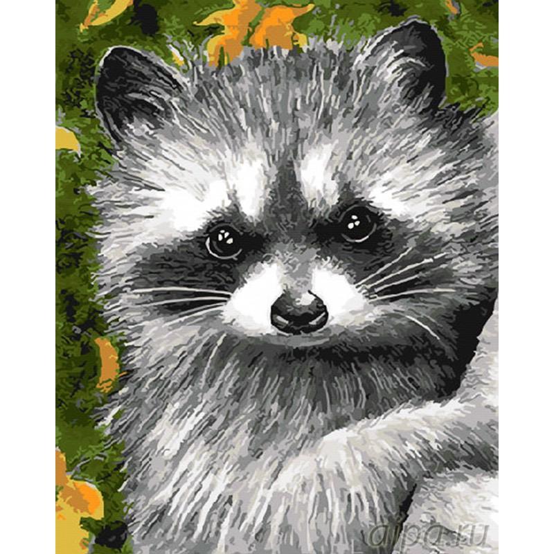 цветочным открытки живопись еноты она насколько