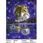 Количество цветов и сложность Ночь волка Раскраска картина по номерам на холсте GX5545