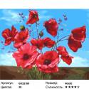 Маковый куст Раскраска картина по номерам на холсте