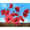 Маковый куст Раскраска картина по номерам на холсте GX22180