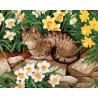 Кот в нарциссах Раскраска картина по номерам на холсте GX22851