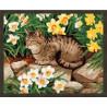 В рамке N181 Кот в нарциссах Раскраска картина по номерам на холсте