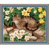 В рамке N182 Кот в нарциссах Раскраска картина по номерам на холсте
