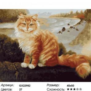 Количество цветов и сложность Рыжий и пушистый Раскраска картина по номерам на холсте GX22982
