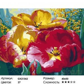 Количество цветов и сложность Раскрытые тюльпаны Раскраска картина по номерам на холсте GX21362