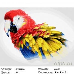 Количество цветов и сложность Яркий попугай Раскраска картина по номерам на холсте GX21900