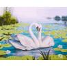Лебеди и кувшинки Раскраска картина по номерам на холсте GX22827