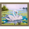 В рамке N133 Лебеди и кувшинки Раскраска картина по номерам на холсте