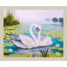 В рамке N166 Лебеди и кувшинки Раскраска картина по номерам на холсте