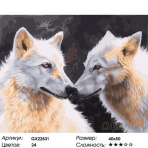 Количество цветов и сложность Душа в душу Раскраска картина по номерам на холсте GX22831
