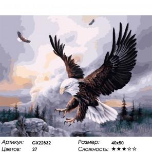 Количество цветов и сложность Орлиная охота Раскраска картина по номерам на холсте GX22832