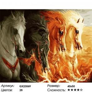 Количество цветов и сложность Четыре масти Раскраска картина по номерам на холсте GX23069