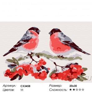 Сложность и количество цветов Снегири Раскраска по номерам на холсте CX3458