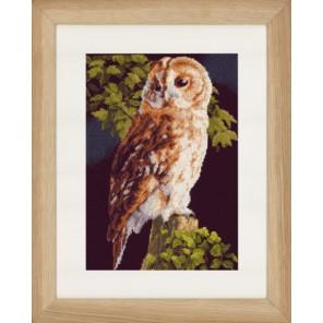 Owl Набор для вышивания LanArte PN-0146814