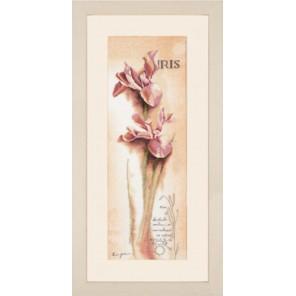 Iris - Botanical Набор для вышивания LanArte PN-0008049