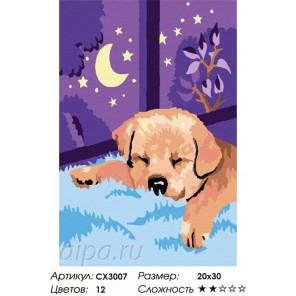 Сложность и количество цветов  Спокойной ночи Раскраска по номерам на холсте CX3007