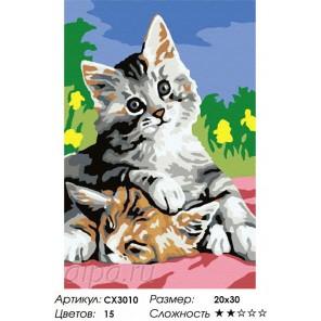 Сложность и количество цветов  Котята Раскраска по номерам на холсте CX3010