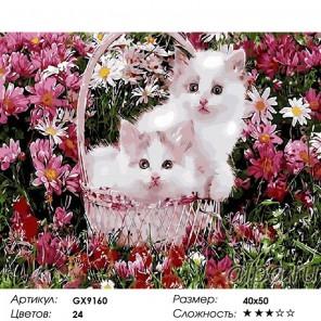 Сложность и количество красок Котята в корзинке Раскраска картина по номерам на холсте GX9160