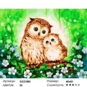 Сложность и количество красок  Милые совы Раскраска картина по номерам на холсте GX21883