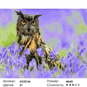 Сложность и количество красок  Филин в поле Раскраска картина по номерам на холсте GX23146