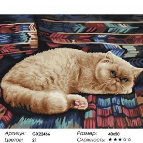 Сложность и количество красок  Ленивый кот Раскраска картина по номерам на холсте GX22466