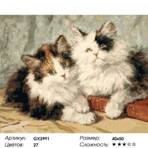 Сложность и количество цветов  Пушистые котята Раскраска картина по номерам на холсте GX3991