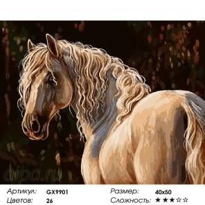 Сложность и количество красок  Лошадь Раскраска картина по номерам на холсте GX9901