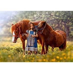 Лошади Пазлы Castorland B52509