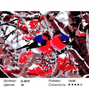 Сложность и количество красок  Снегири Раскраска мини по номерам G-S019