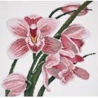 Зов орхидеи Набор для вышивания Овен