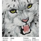 Сложность и количество красок Барс Раскраска картина по номерам на холсте CD022