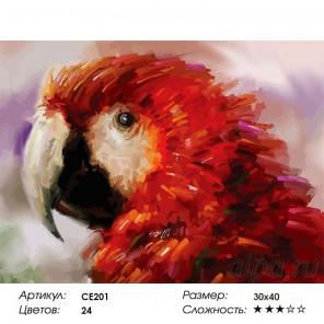 Сложность и количество красок Попугай Раскраска картина по номерам на холсте CE201