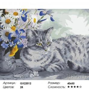 Сложность и количество красок  Букет и серый кот Раскраска картина по номерам на холсте GX22012