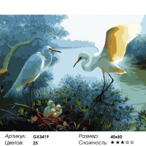 Сложность и количество красок  Цапли Раскраска картина по номерам на холсте GX3419
