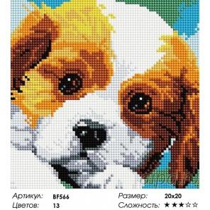 Сложность и количество цветов  Щенок Алмазная мозаика вышивка на подрамнике BF566