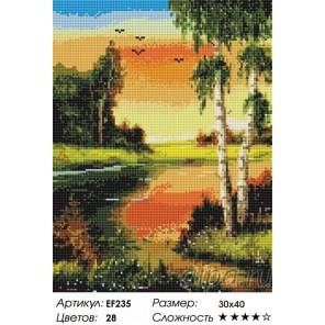 Сложность и количество цветов  Березки на закате Алмазная мозаика вышивка на подрамнике EF235