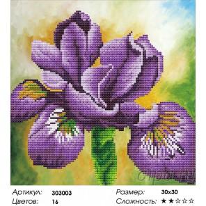 Сложность и количество цветов Ирис Алмазная частичная вышивка (мозаика) Color Kit