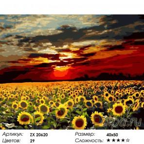 Количество цветов и сложность Поле подсолнухов на закате Раскраска картина по номерам на холсте  ZX 20620