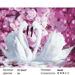 Количество цветов и сложность Лебединая верность Раскраска картина по номерам на холсте  ZX 20627