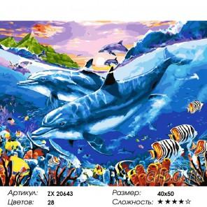 Количество цветов и сложность Дружные дельфины Раскраска картина по номерам на холсте ZX 20643