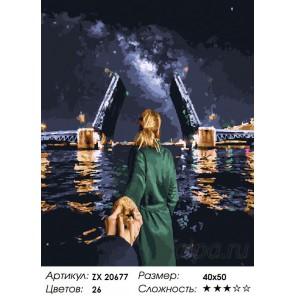Санкт-Петербург. Следуй за мной Раскраска картина по номерам на холсте ZX 20677