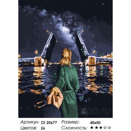 ZX 20677 Санкт-Петербург. Следуй за мной Раскраска картина ...
